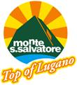 logo-monte-san-salvatore-small